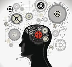 καθημερινότητα και ξεχωριστές γνώσεις