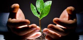 4 τρόποι να μεγαλώσεις την επιχείρησή σου ομαλά